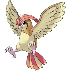 250px-017Pidgeotto.png